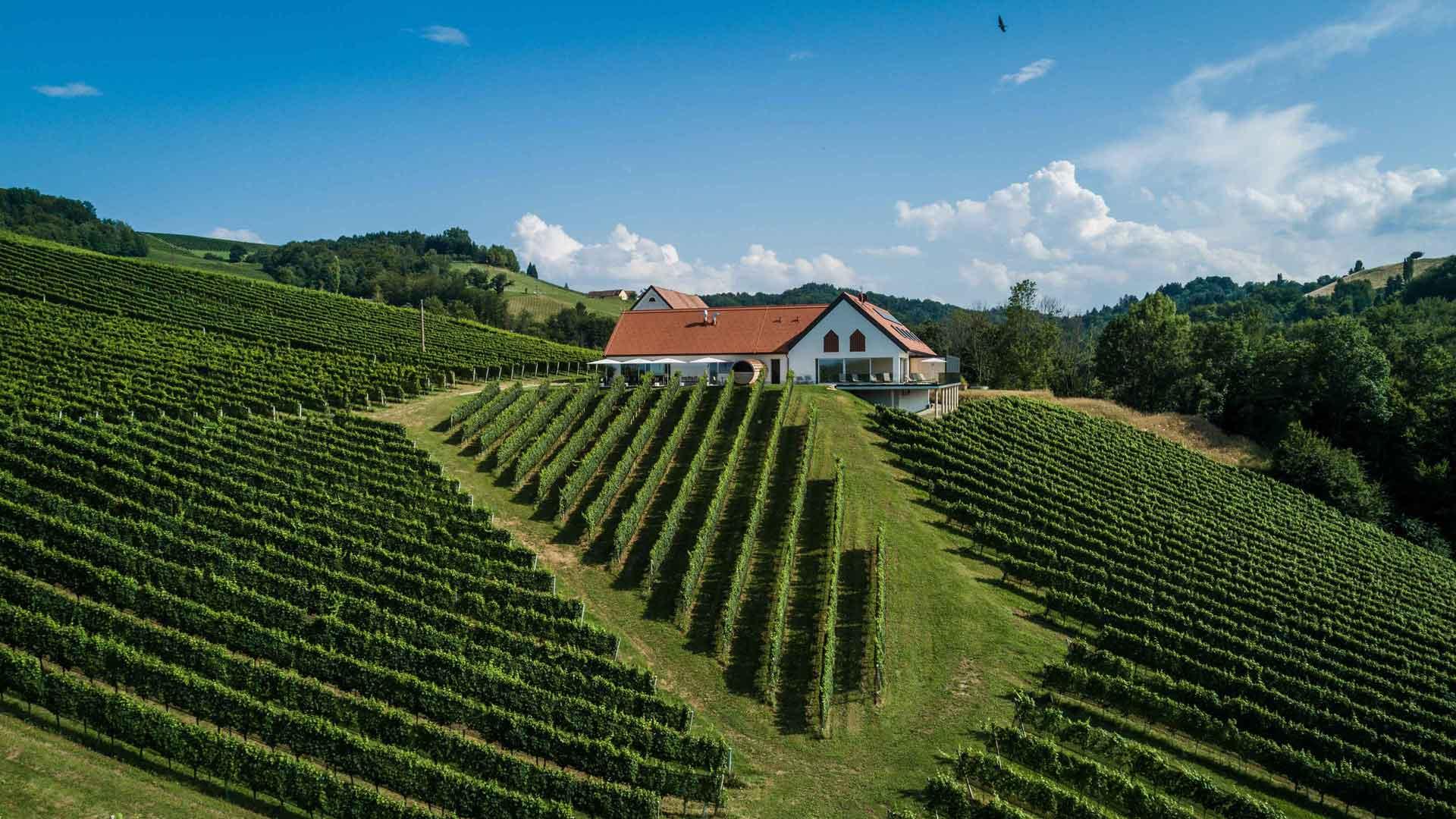 Weinschmiede 18 – Südsteiermark entdecken